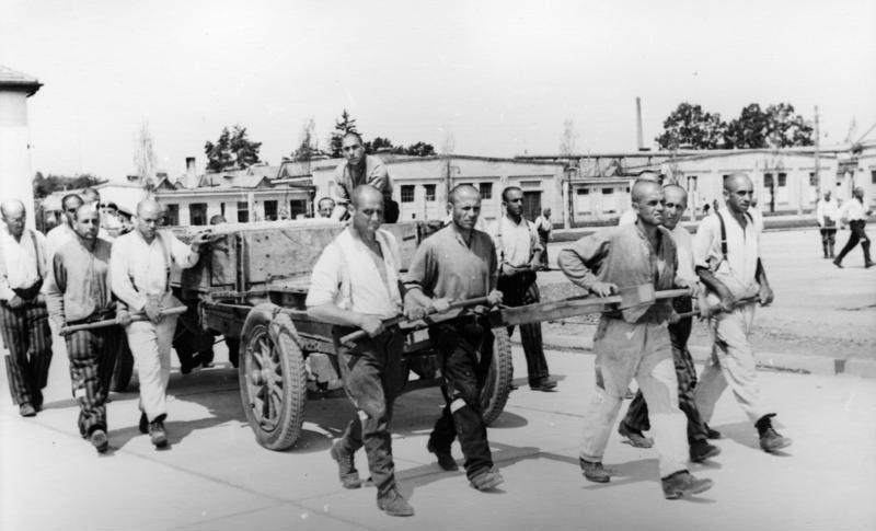 Bundesarchiv_Bild_152-21-24A_Dachau_Konzentrationslager.jpg