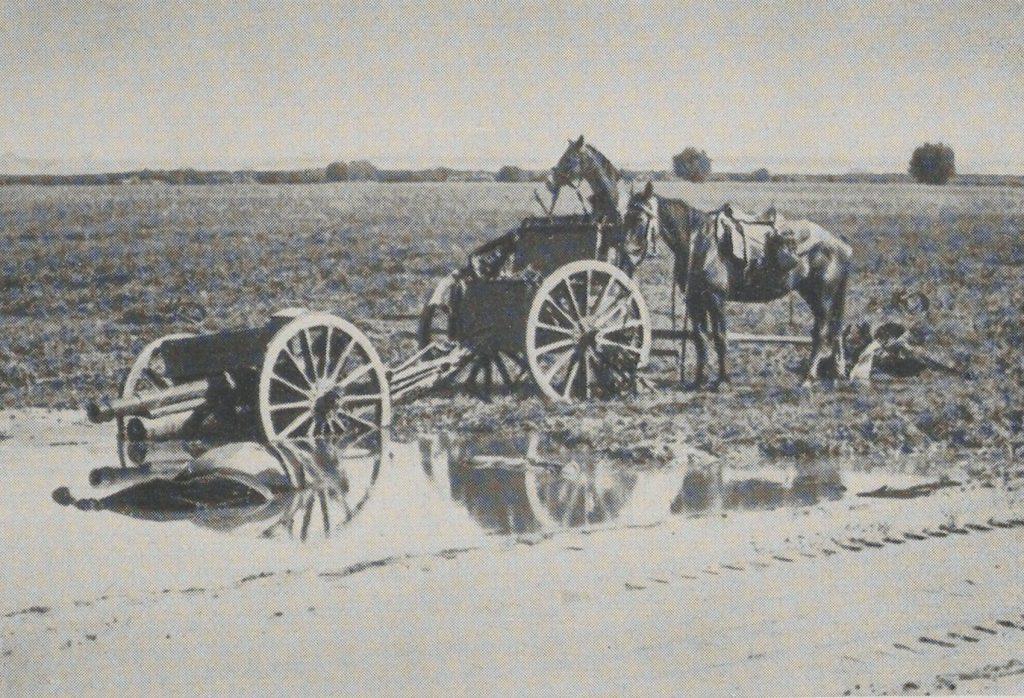 Po bitwie porzucone działo i konie