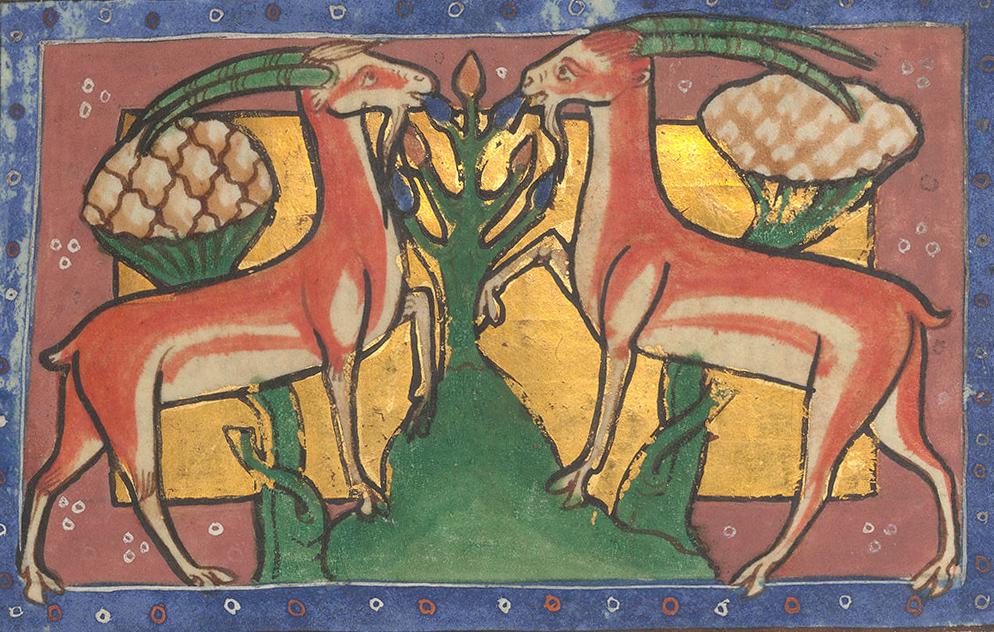 Średniowieczny bestiariusz z Worksop. Najdziwniejsze wiadomości o zwierzętach z XII wieku - WielkaHistoria