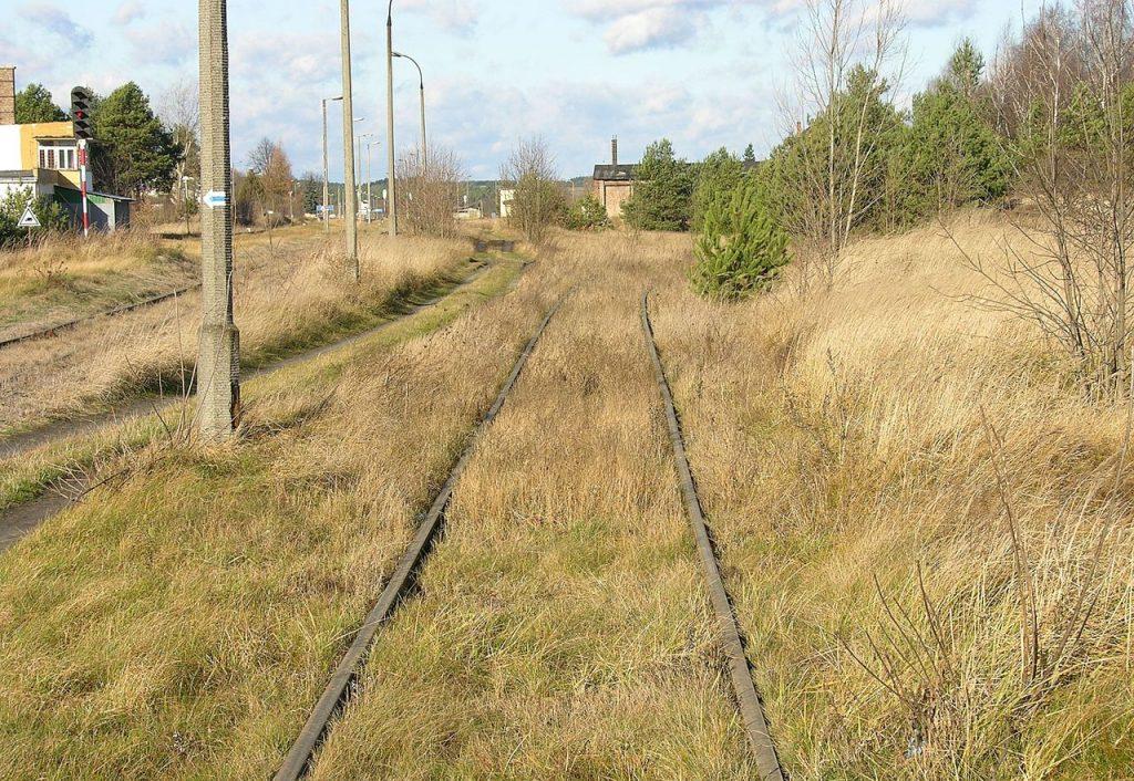 Fragment bocznicy kolejowej, którą Niemcy dowozili Żydów do obozu zagłady w Bełżcu (Adrian Grycuk/CC BY-SA 3.0 pl).