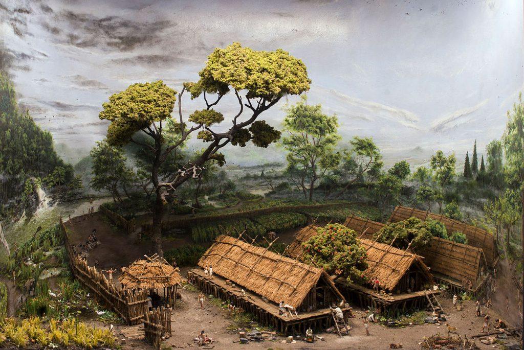 Neolityczna rewolucja agrarna dokonała się wszędzie tam, gdzie występowały rośliny, które można było udomowić (Adelehant/CC BY-SA 4.0).