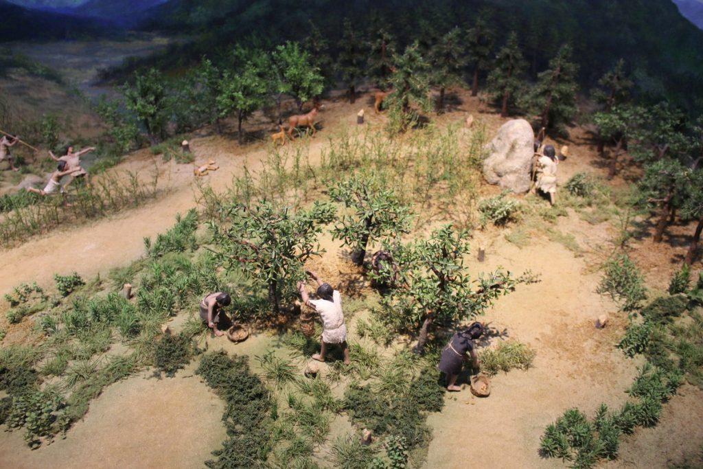 Przez ponad 2,5 miliona lat ludzie oddawali się tylko zbieractwu i łowiectwu (domena publiczna).