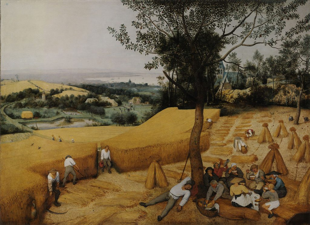 Zdaniem Yuvala Noaha Harariego to nie człowiek udomowił rośliny, lecz rośliny człowieka (Pieter Bruegel/domena publiczna).