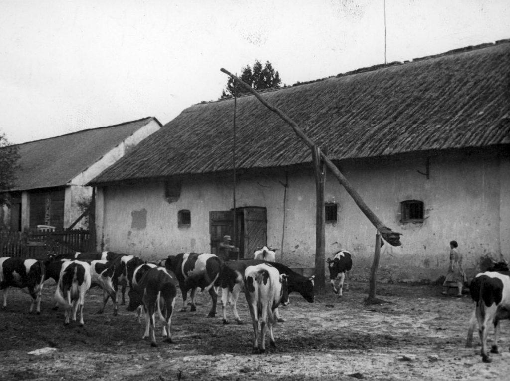Volksdeutsch R. zgwałcił wielu polskich praktykantów. Na zdjęciu poglądowym gospodarstwo jednego z volksdeutschów z Generalnego Gubernatorstwa (domena publiczna).