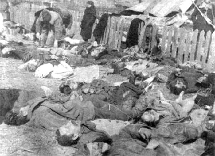 Ciała zamordowanych Polaków w koloni Lipniki (domena publiczna).