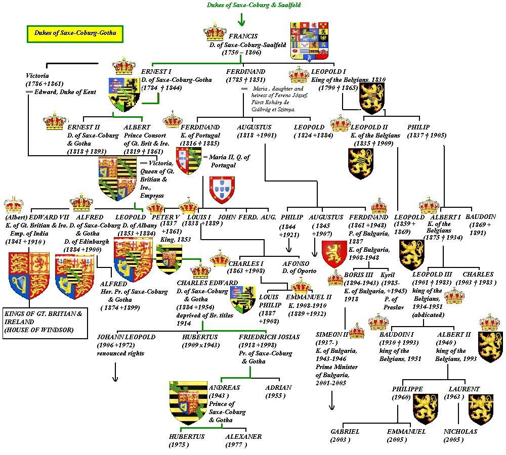 Drzewo genealogiczne dynastii Sasko-Koburskiej obejmujące jej członków panujących a Belgi, Portugalii Bułgarii i Wielkiej Brytanii (self/CC BY-SA 3.0).