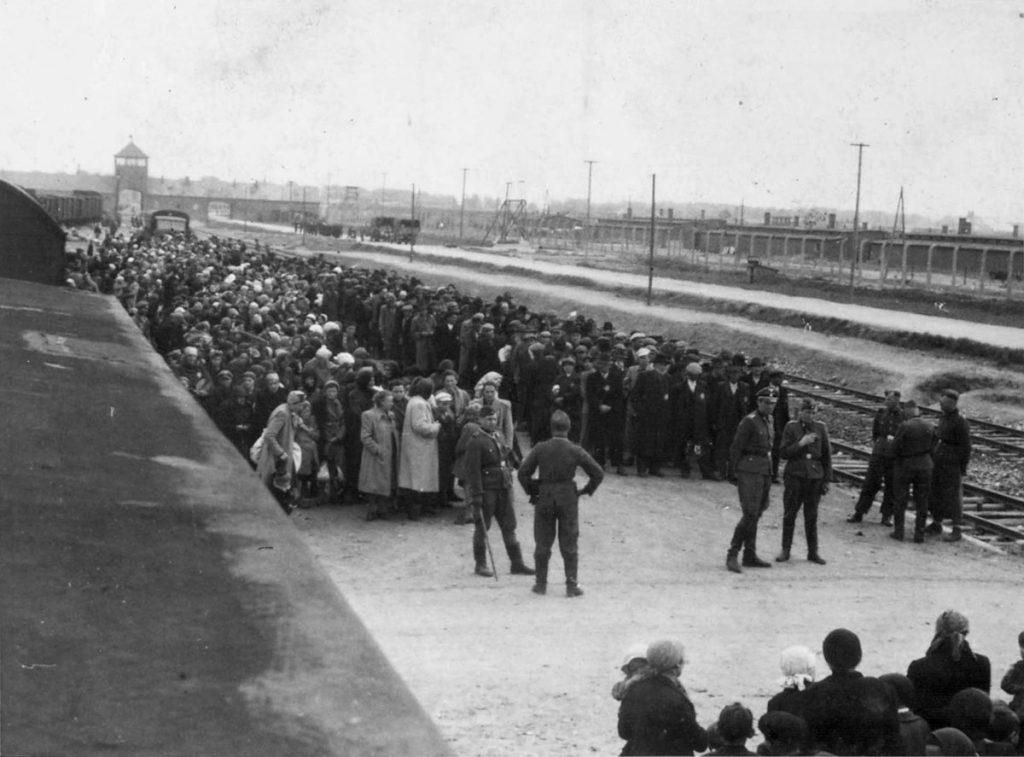 Według obliczeń profesora Aleksandra Lasika w czasie funkcjonowania Auschwitz-Birkenau przez obóz przewinęło się około 6800 esesmanów i 200 esesmanek (domena publiczna).