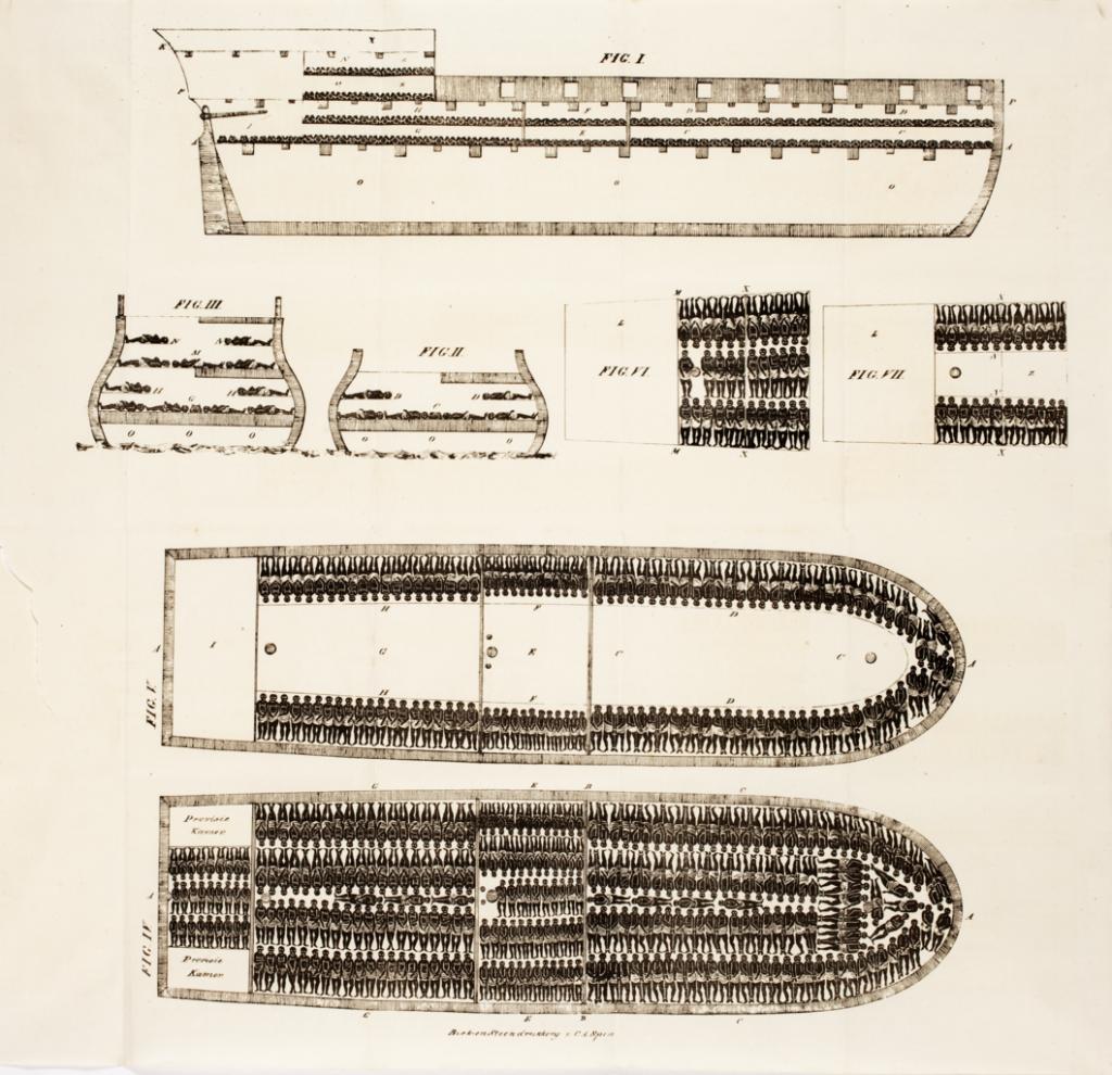 Przekrój dużego XIX-wiecznego statku niewolniczego (domena publiczna).