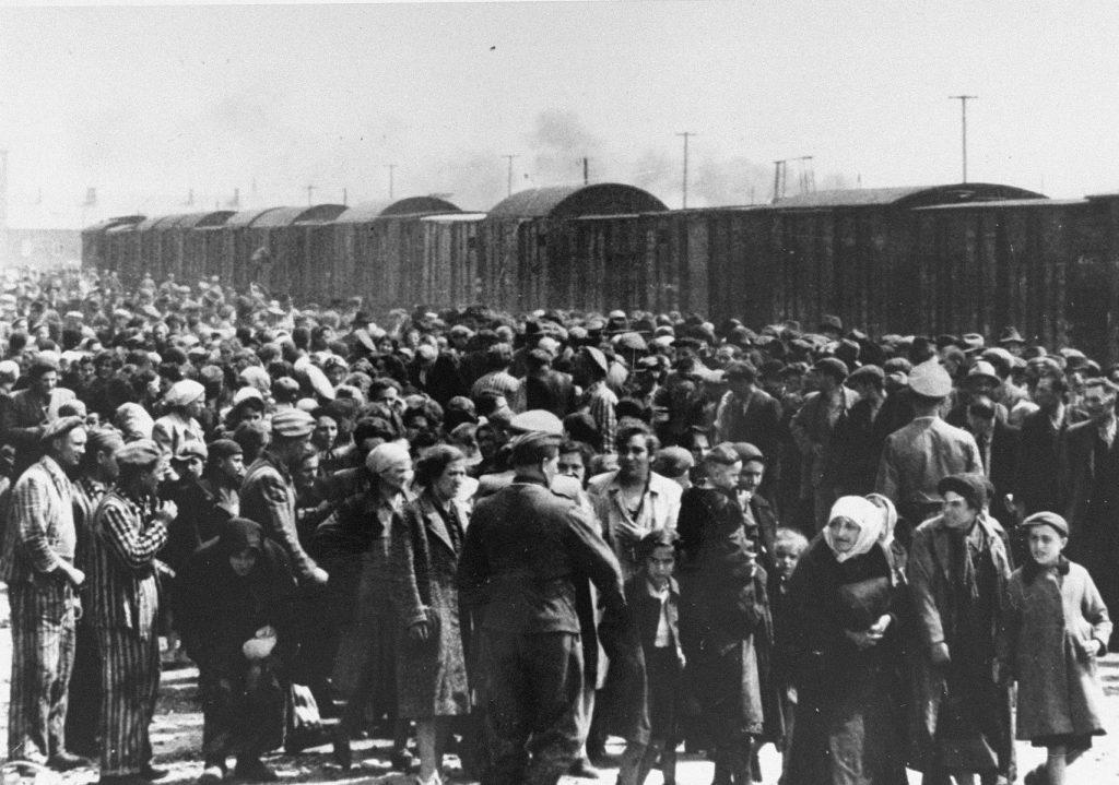 Selekcja transportu węgierskich Żydów w Auschwitz-Birkenau (domena publiczna).
