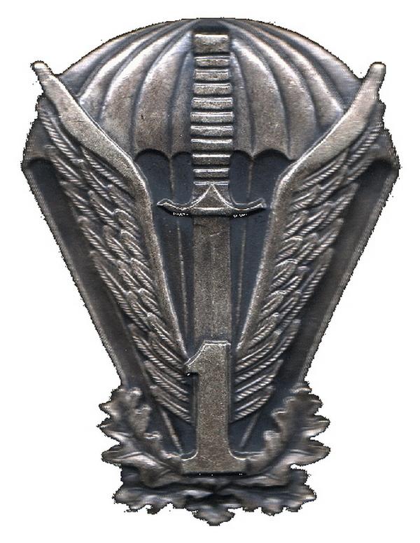 Oznaka pamiątkowa 1. Pułku Specjalnego (domena publiczna).