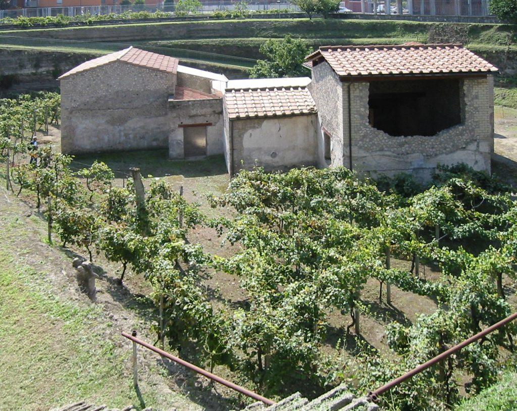 Pozostałości jeden z posiadłości, które pokryły popioły Wezuwiusza (AlMare/CC BY-SA 3.0).