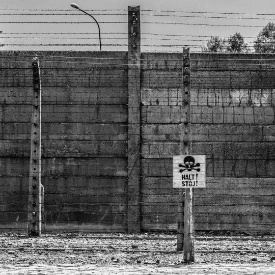 Betonowe ogrodzenie obozu Auschwitz-Birkenau.