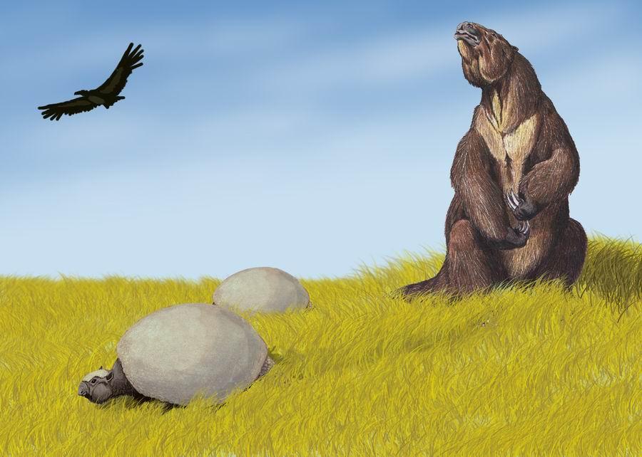 Leniwiec ziemny na współczesnym rysunku.