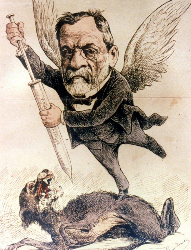 Ludwik Pasteuri  jego szczepionka na wściekliznę. Rysunek z 1886 roku (domena publiczna)