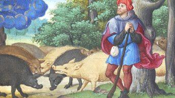 Knury na średniowiecznej miniaturze