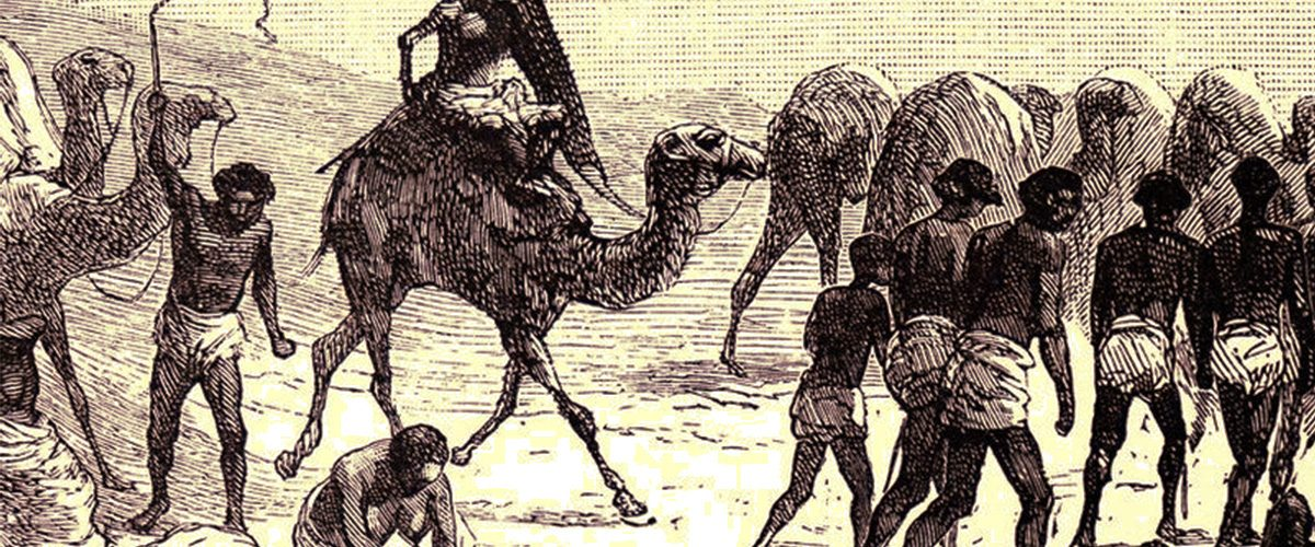 Karawana niewolników pędzonych przez Saharę.