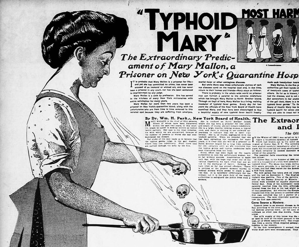 Fragment artykułu prasowego z 1909 roku poświęconego Tyfusowej Mary (domena publiczna).