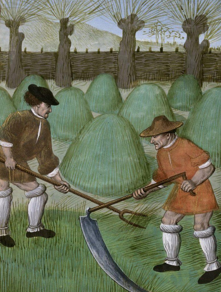 Średniowieczni chłopi przy pracy. Miniatura z epoki