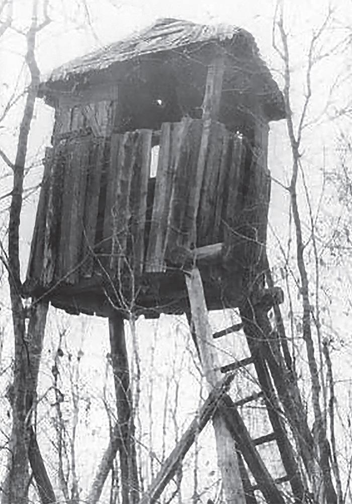 Opuszczona Wyszka, wieża strażnicza na terenie byłego łagru.