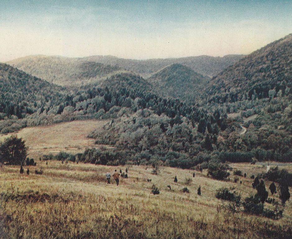 Panorama Jabłonek, to tam zginął Świerczewski (Tadeusz Sumiński/domena publiczna).