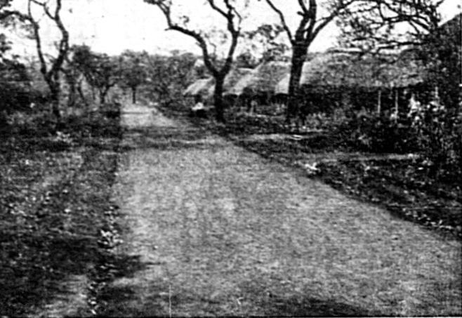 """Ulica osiedla Masindi. Zdjęcie z wtdawanego w latach 194301945 dwutygodnika """"Polak w Afryce"""" (domena publiczna)."""